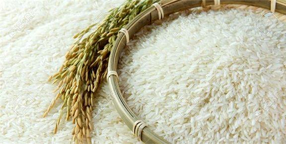 افزایش قیمت برنج خارجی